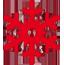 Icon Schneeflocke